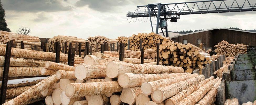 RSPO Сертифікація ланцюга поставок пальмової олії