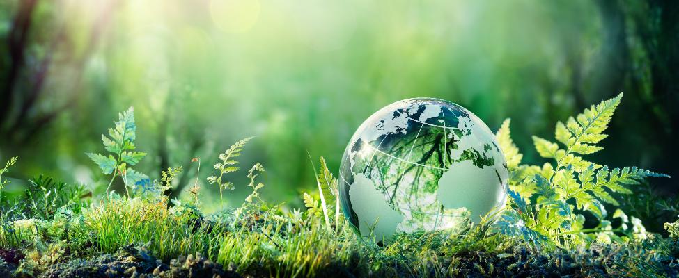 ISCC Міжнародний сталий розвиток і вуглецева сертифікація